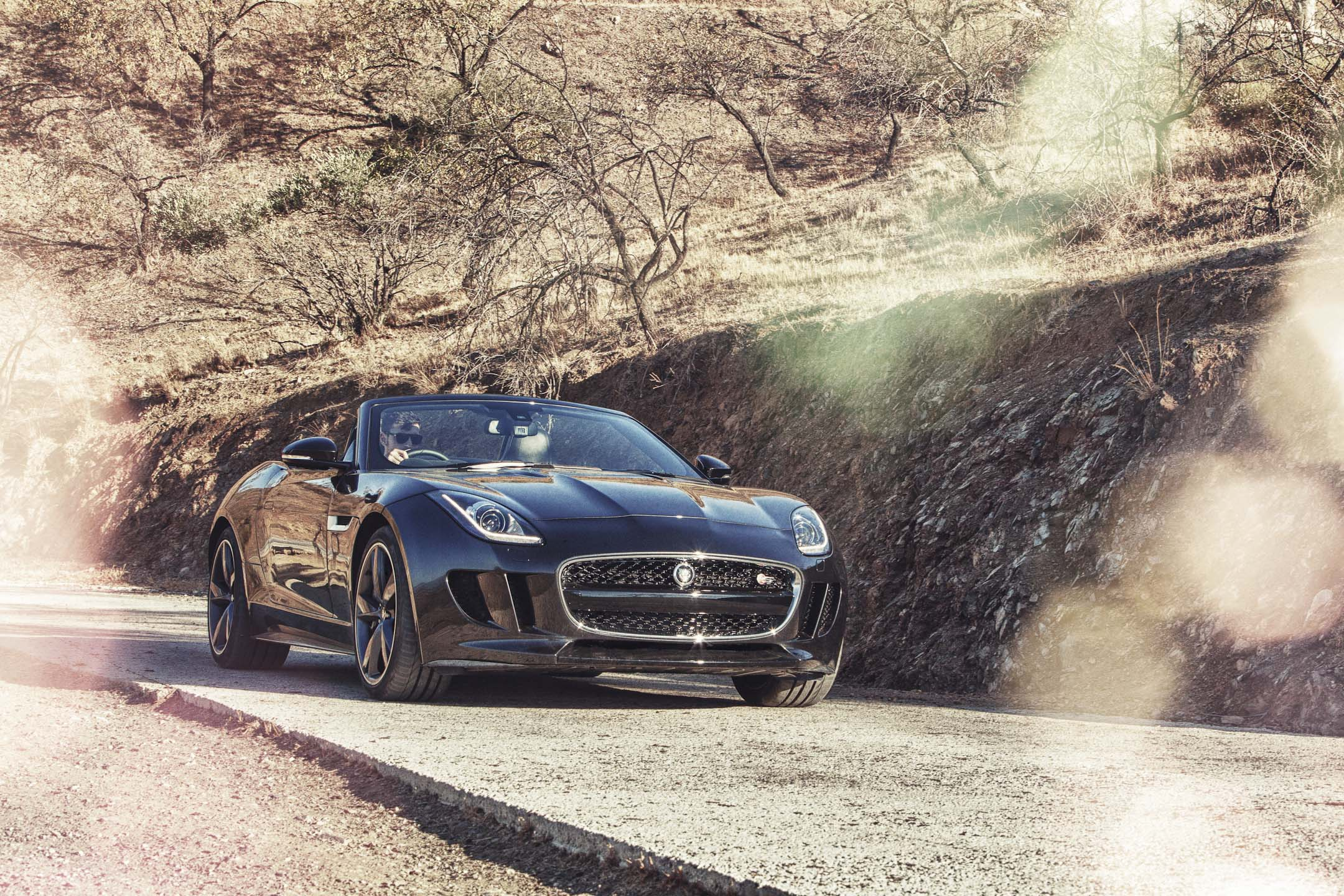 AH Jag Black F Type Landscape 9 Oct 12.jpg