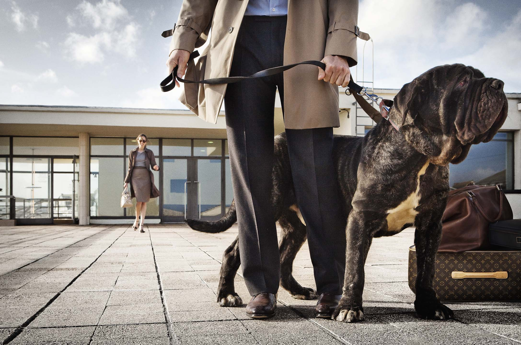 Alex Howe animal dog on leash with owner in wind by Luis Vuitton suitcase