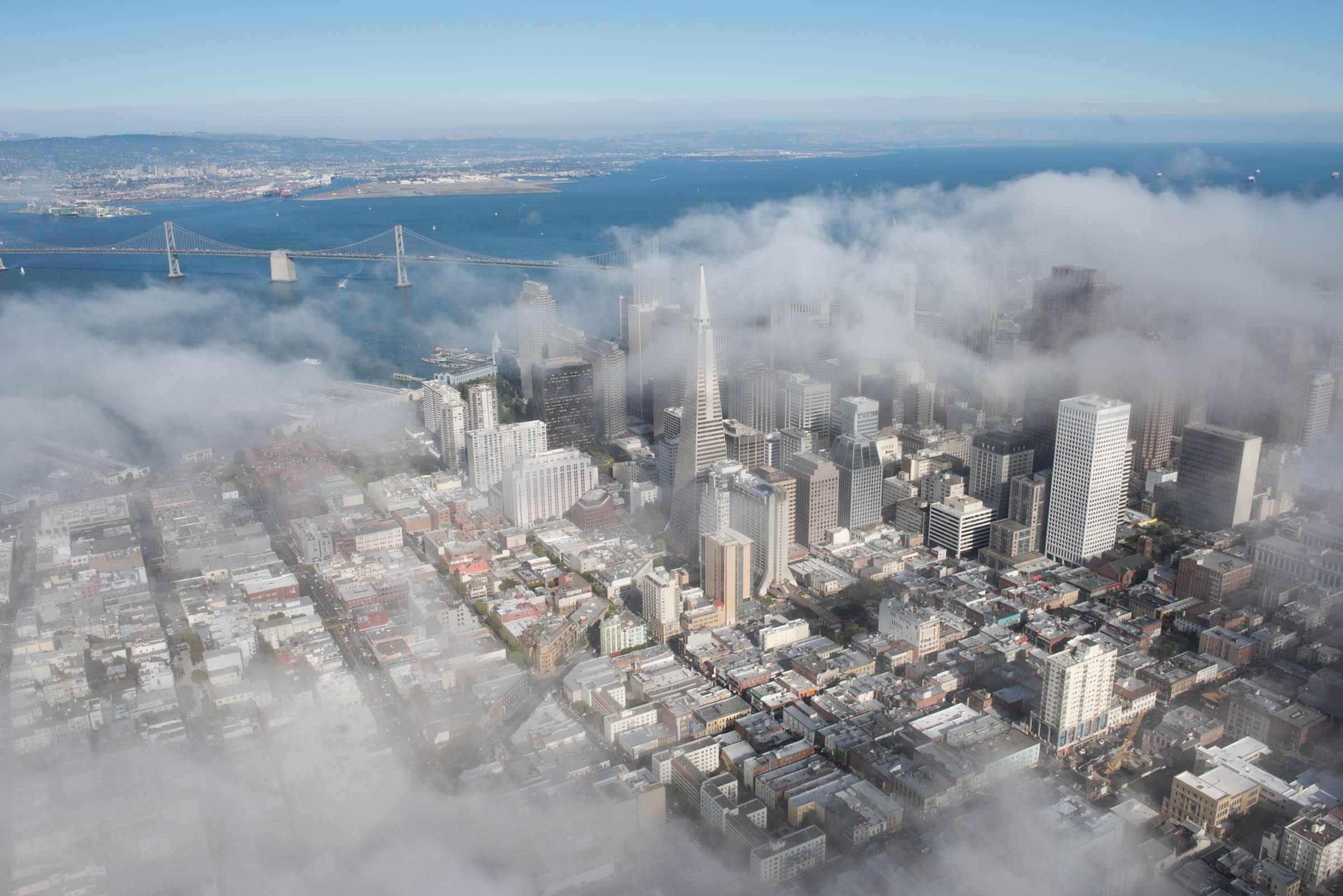 JH San Francisco Fog